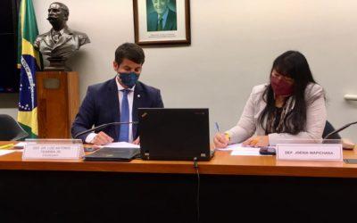 COVID ENTRE ÍNDIOS: COMISSÃO PEDE RAPIDEZ PARA VOTAÇÃO DOS VETOS PRESIDENCIAIS