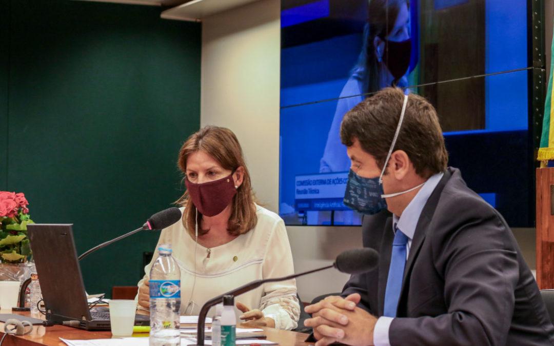 Comissão externa da Câmara completa cinco meses no enfrentamento ao novo coronavírus